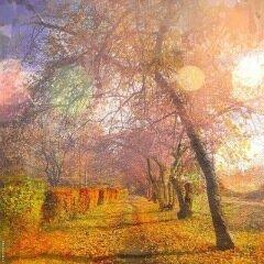Мобильная фотография от Константина Лекомцева