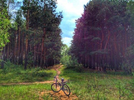 Фото велопрогулки от Илдара. 3-ье место